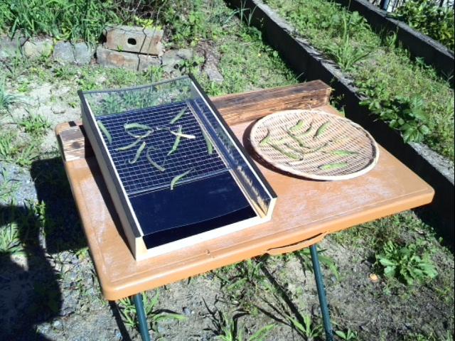 ソーラー干し網を研究